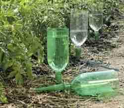 01e9c1df3f011f5a5d9d8a4d2bf6d3a3--pop-bottles-wine-bottles